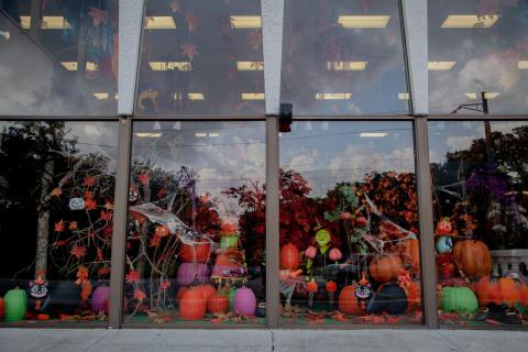 Fall Display 2