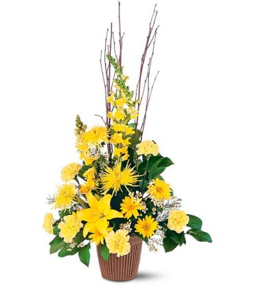Brighter Blessings Arrangement