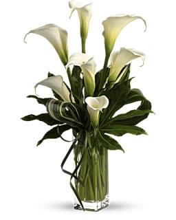 Teleflora\'s My Fair Lady