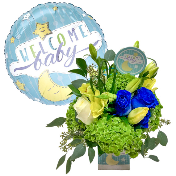 Welcome Baby Boy Bundle