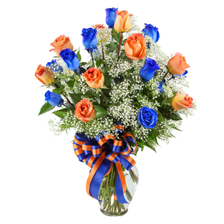 2 Dozen Roses Florida Gator Colors