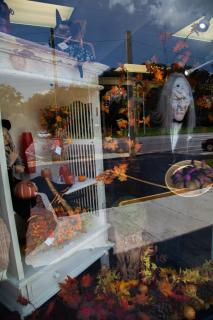 Fall Display 6