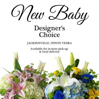 New Baby Designer\'s Choice