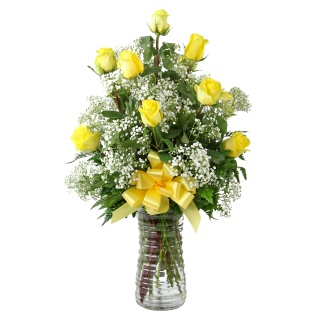 1 Dozen Roses Yellow