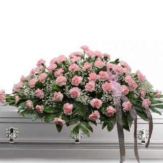 Classic Pink Carnation Casket Spray