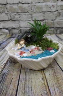 White Seashell Beach Garden