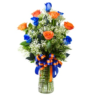 1 Dozen Roses Florida Gator Colors